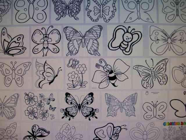 mariposas para colorear de google imagenes