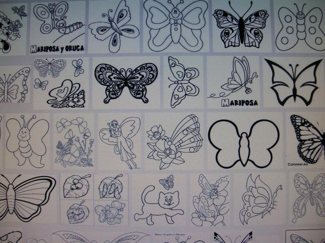 mariposas para colorear de google imágenes
