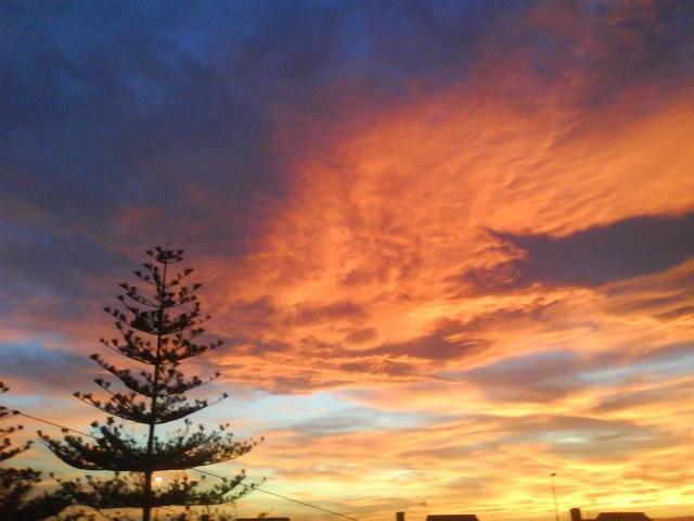 cielo naranja valencia