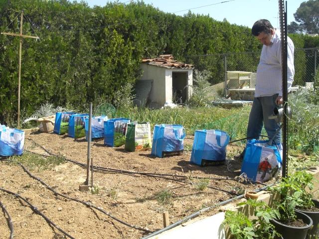 cultivo en bolsas de plastico ecologicas de supermercado