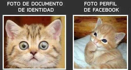 foto dni foto facebook