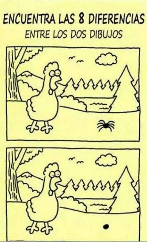ocho diferencias patitas araña