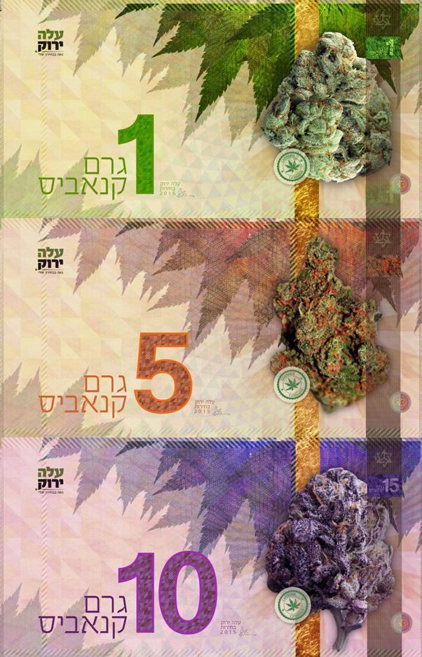 snelks moneda cannabica israeli