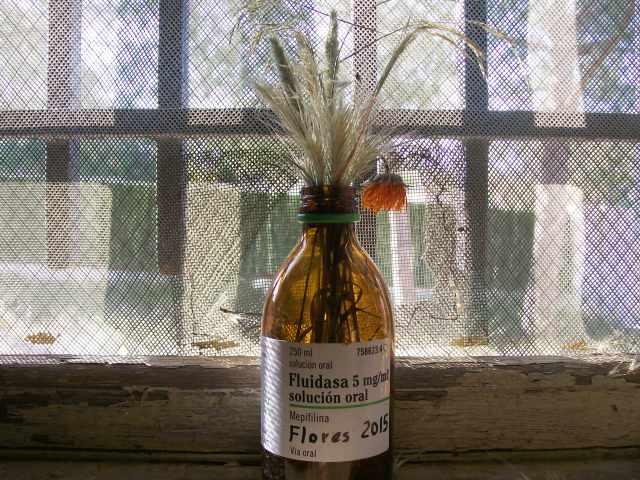Flores del campo secas en botellin de jarabe del medicamento fluidasa