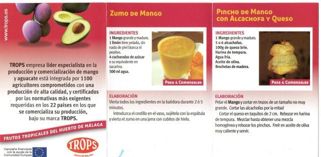 flyer mango